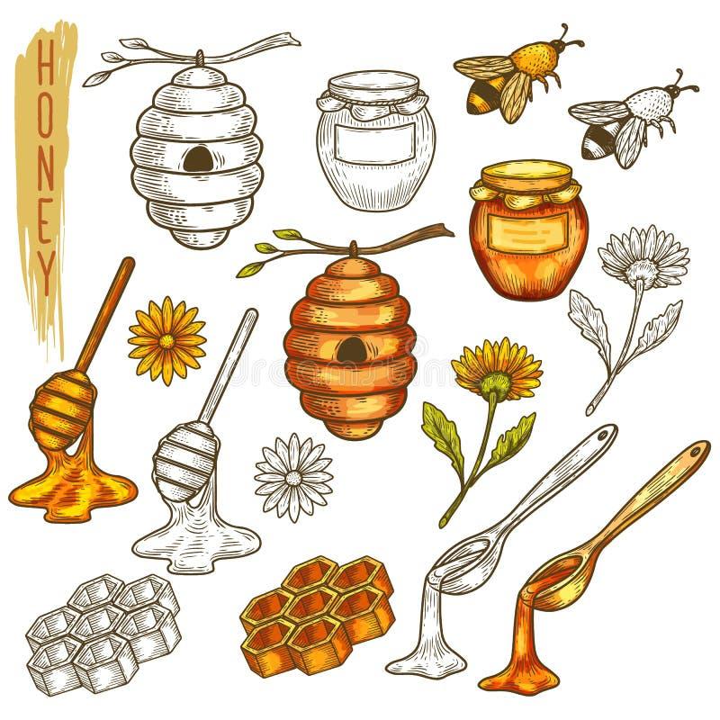 Metta degli elementi isolati del miele nella linea royalty illustrazione gratis
