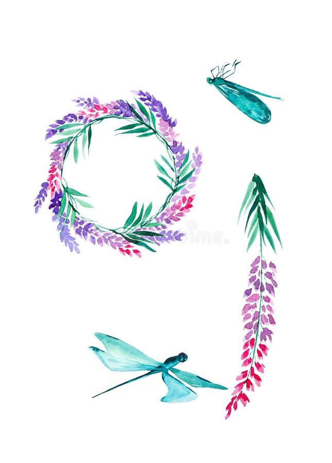 Metta dei fiori della lavanda, delle libellule e di una corona dei fiori della lavanda Illustrazioni dell'acquerello isolate su f fotografie stock libere da diritti