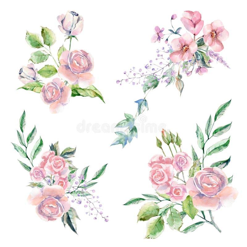 Metta dei fiori, delle foglie e delle piante dipinti a mano dell'acquerello illustrazione di stock
