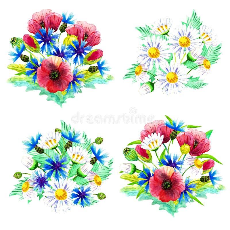 Metta dei mazzi dell'acquerello dei wildflowers Mazzi con i papaveri, le margherite ed i fiordalisi Per le carte e gli inviti illustrazione di stock