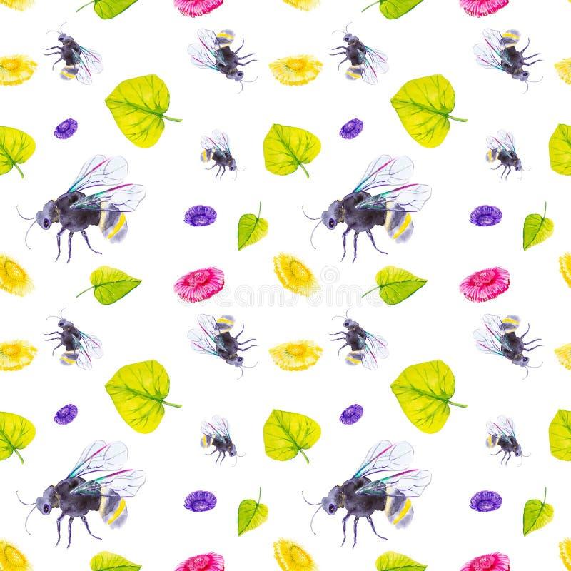 Metta del bombo, delle margherite e delle foglie verdi a terra Illustrazione dell'acquerello isolata su fondo bianco Reticolo sen royalty illustrazione gratis