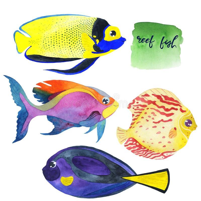 Metta del pesce di corallo dell'acquario dell'acquerello royalty illustrazione gratis