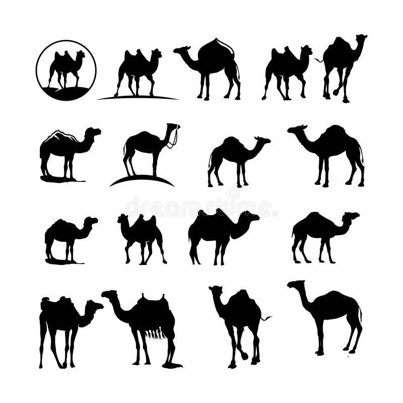 Metta del silhoutte del cammello illustrazione vettoriale