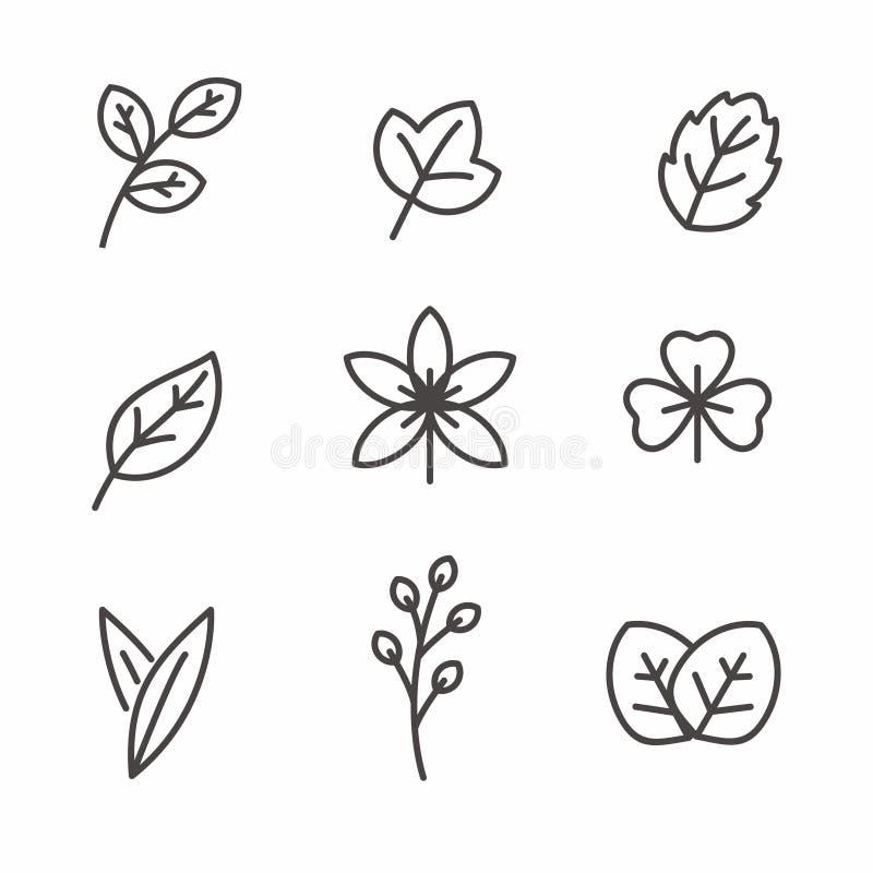 Metta dell'icona della foglia con la linea semplice la progettazione, illustrazione di vettore della foglia illustrazione vettoriale