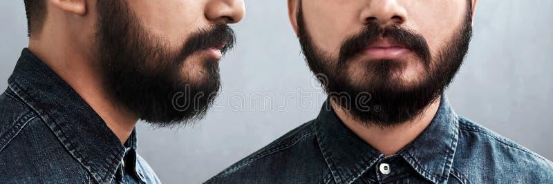 Metta dell'uomo barbuto isolato su fondo grigio immagini stock