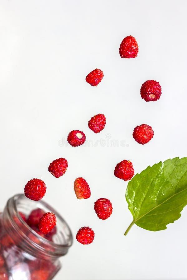 Metta della fragola di bosco succosa deliziosa sparsa dai barattoli di vetro fotografie stock