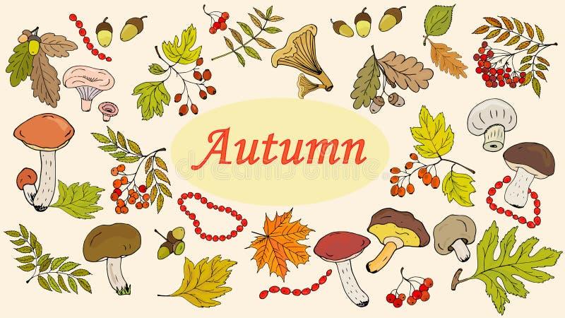 Metta delle foglie, delle bacche e dei funghi di autunno su fondo bianco Vettore illustrazione di stock