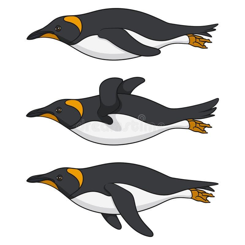 Metta delle immagini di colore di un pinguino di nuoto Oggetti isolati di vettore royalty illustrazione gratis