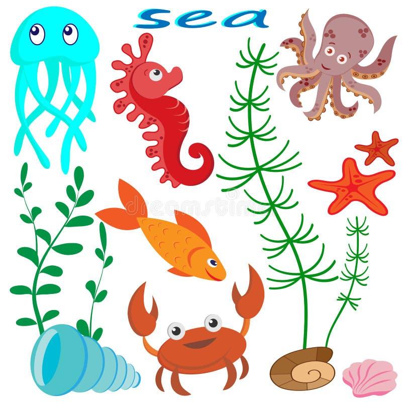 Metta delle immagini di vita marina: meduse, ippocampo, pesce, polipo, granchio, alghe e coperture, isolati su fondo bianco royalty illustrazione gratis