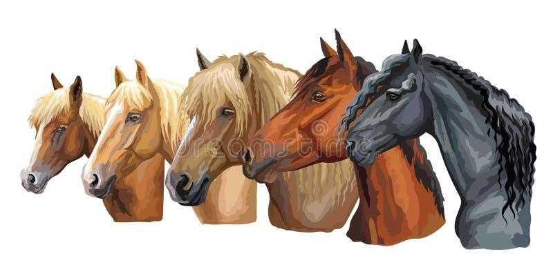 Metta delle razze 4 dei cavalli royalty illustrazione gratis