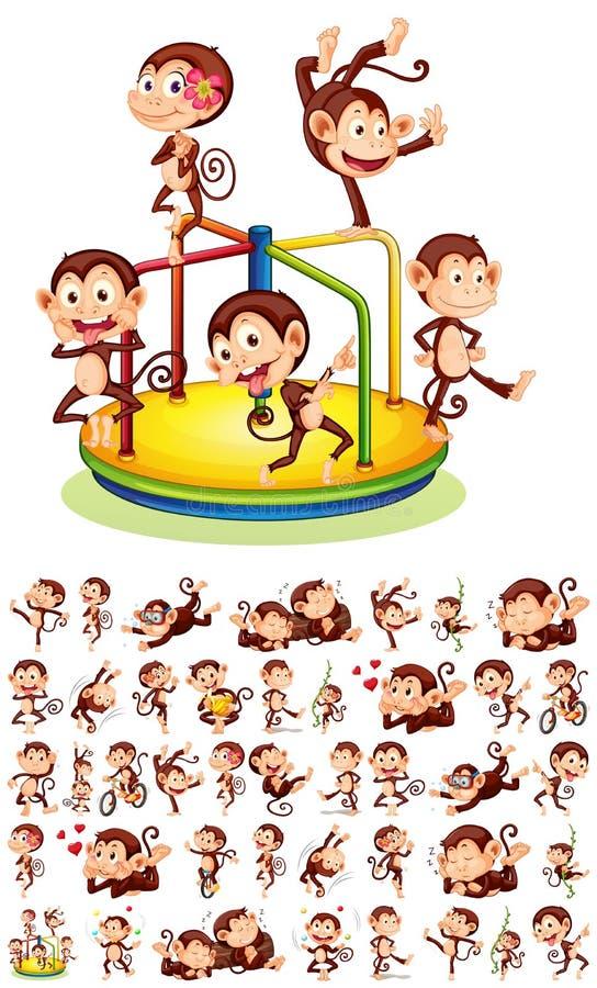 Metta delle scimmie differenti illustrazione di stock