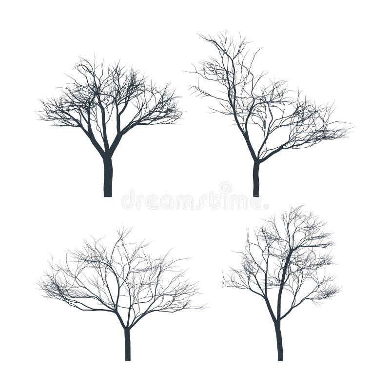 Metta delle siluette degli alberi su fondo bianco Albero nudo illustrazione vettoriale