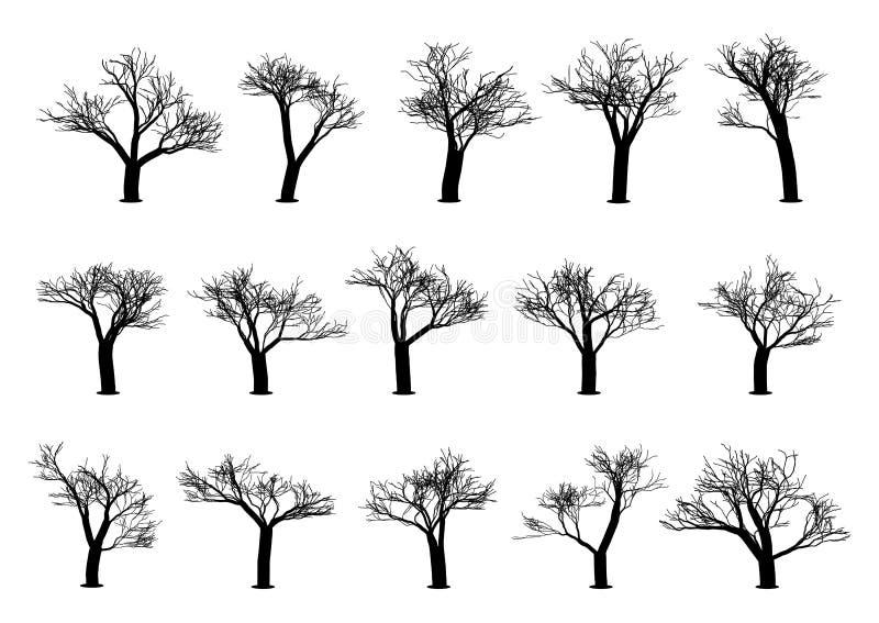 Metta delle siluette dell'albero su un fondo bianco Illustrazione di vettore illustrazione vettoriale