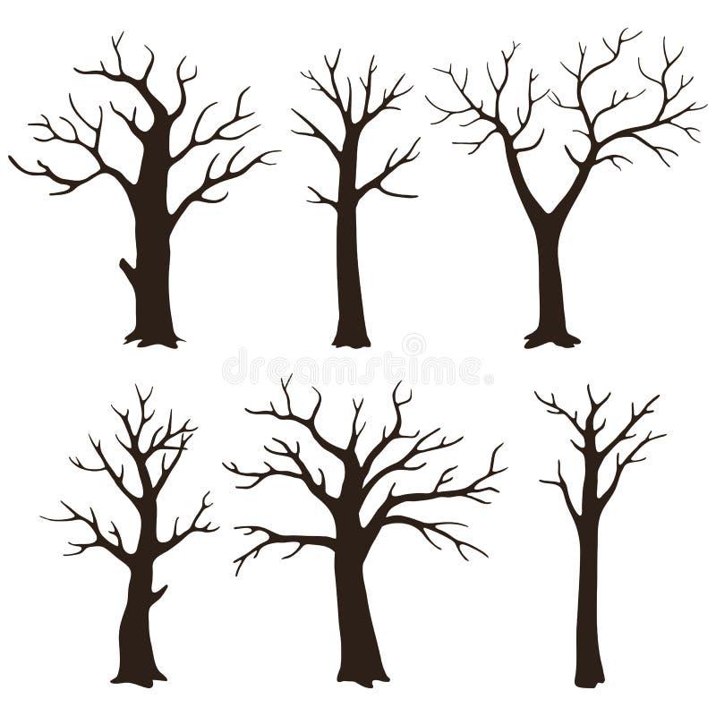 Metta delle siluette nude dell'albero con i rami sfrondati isolati su un fondo bianco illustrazione vettoriale