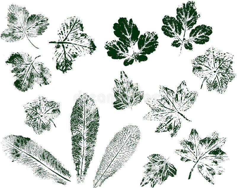 Metta delle stampe della foglia isolate su fondo bianco Inchiostro di bollo verde Vettore illustrazione vettoriale