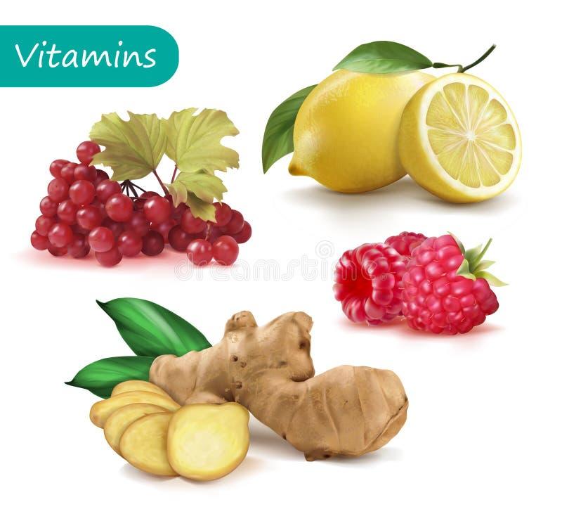 Metta delle vitamine per rinforzare il viburno di immunità, il limone, lo zenzero, lampone royalty illustrazione gratis
