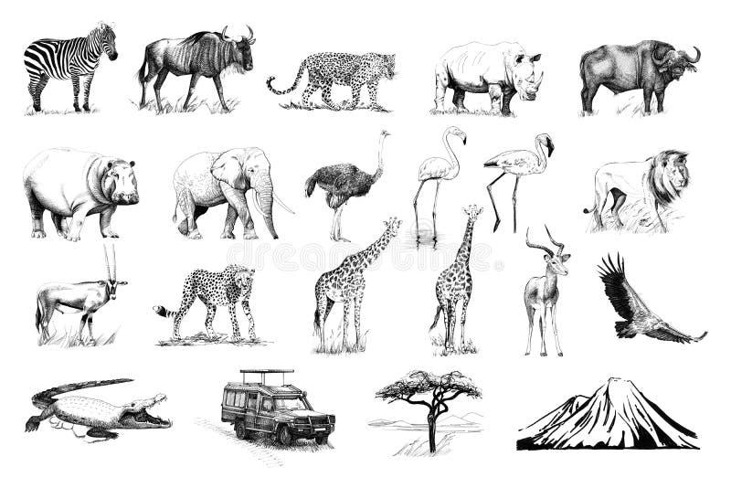 Metta di molti animali africani e dell'automobile, l'albero, la montagna i disegnata a mano illustrazione di stock