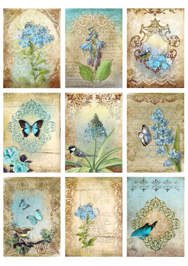 Metta di nove carte d'annata di stile etichetta le immagini floreali di mattino del collage della farfalla blu dell'uccello illustrazione di stock