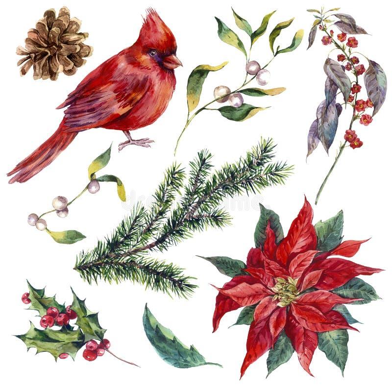 Metta gli elementi d'annata di Natale dell'acquerello di agrifoglio illustrazione di stock