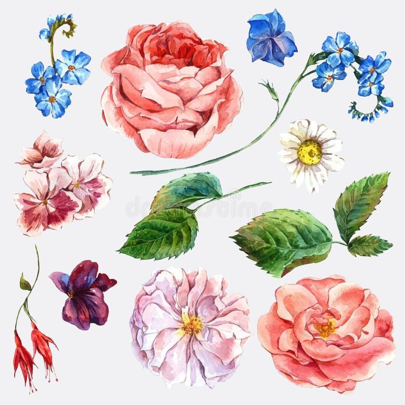 Metta il mazzo d'annata dell'acquerello delle rose e illustrazione di stock