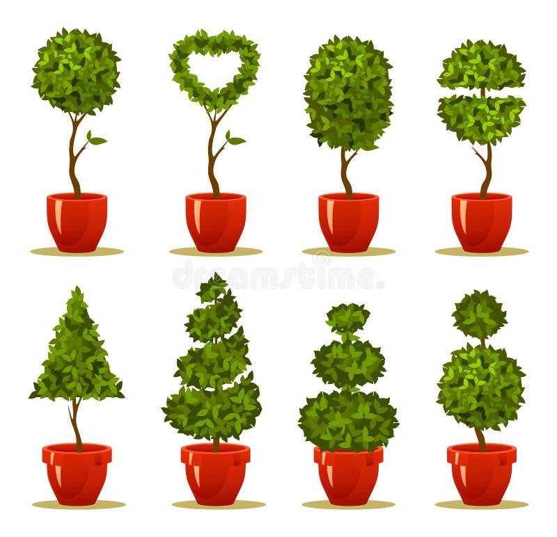 Metta l'albero in un vaso illustrazione vettoriale