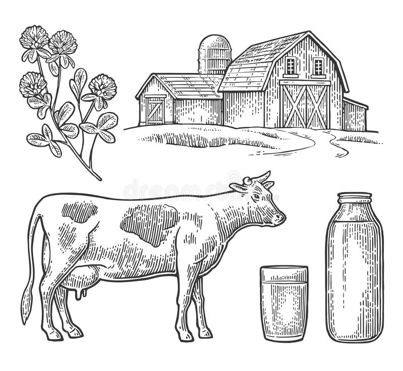Metta l'azienda agricola del latte Intimorisca la testa, il trifoglio, il vetro e la bottiglia illustrazione di stock