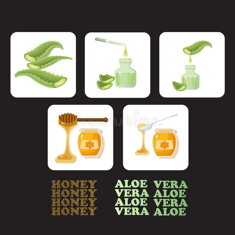 Metta le icone con i pezzi di aloe vera e di miele illustrazione vettoriale