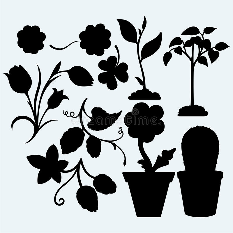 Metta le piante illustrazione di stock