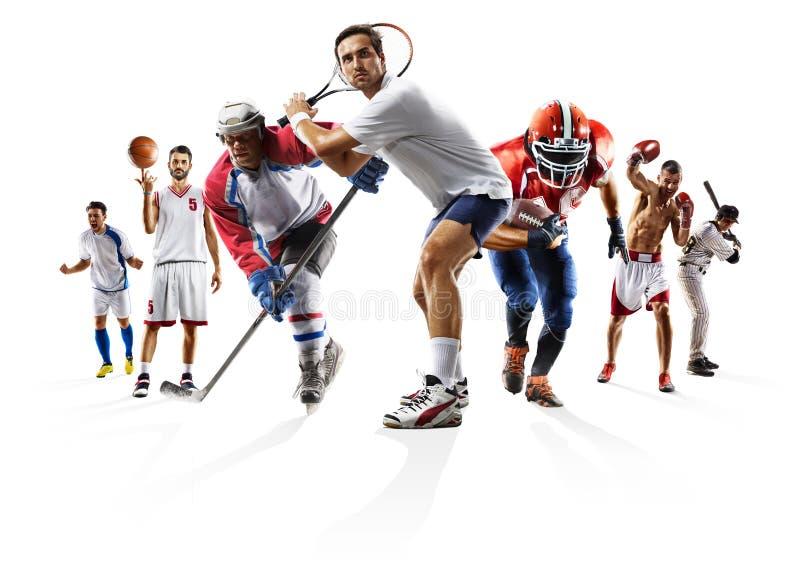 Metta in mostra il hockey su ghiaccio ecc di baseball di pallacanestro di football americano di calcio di pugilato del collage fotografia stock