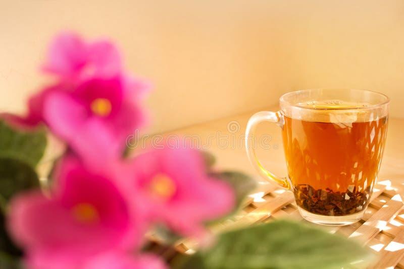 Mettez en forme de tasse le verre de thé noir sur un fond en bois Matin, ensoleillé photos stock