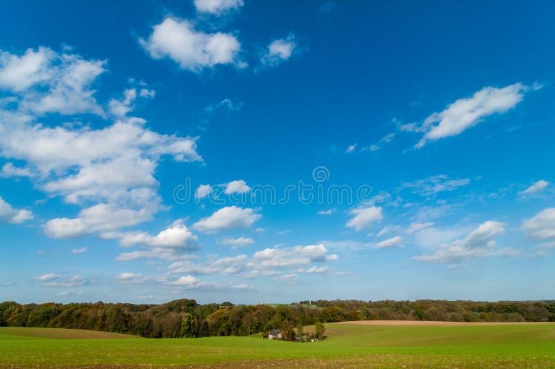 Mettez en place avec les usines vertes de germination, la maison dans l'immersion et le ciel nuageux photos libres de droits