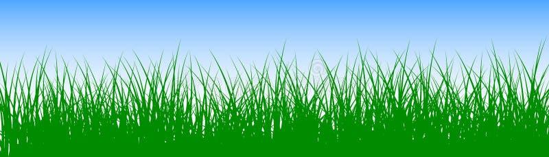 Mettez en place, herbe verte sur le fond blanc - vecteur illustration stock