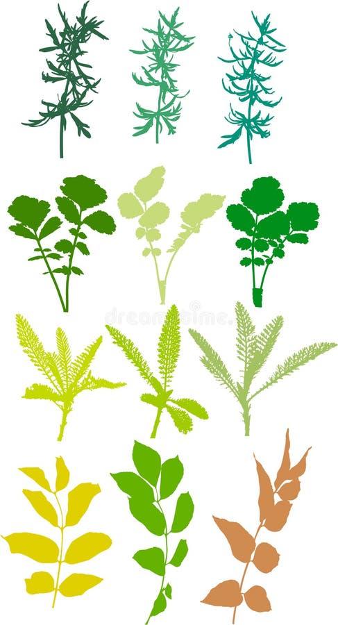 Mettez en place les centrales, herbes, lames - vecteur, tracé illustration de vecteur