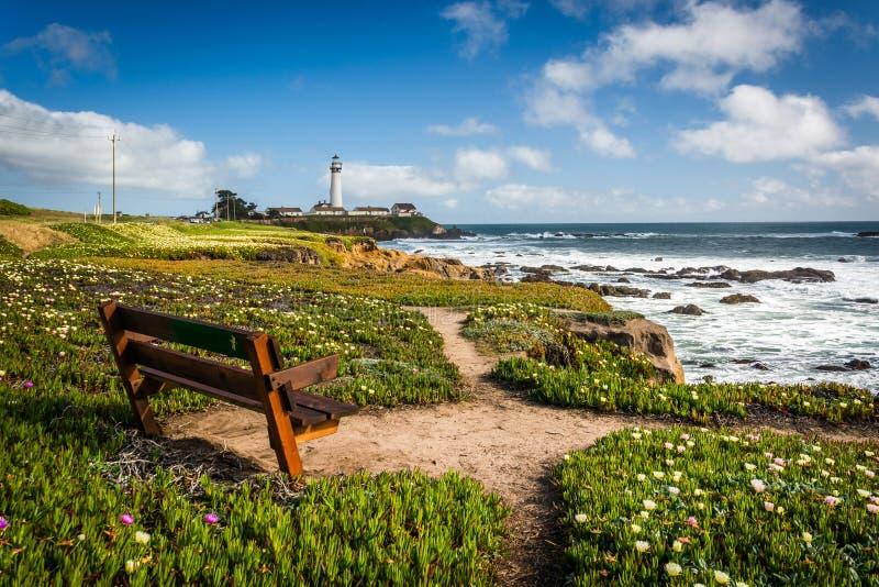 Mettez hors jeu et vue de phare de point de Piegon dans Pescadero, Californ photo libre de droits