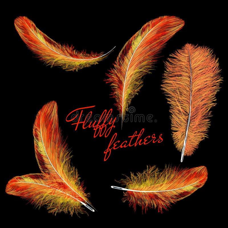 Mettez le feu à l'oiseau du feu de plumes d'isolement sur un fond noir Le style facile, peut être employé en insectes, bannières, illustration libre de droits
