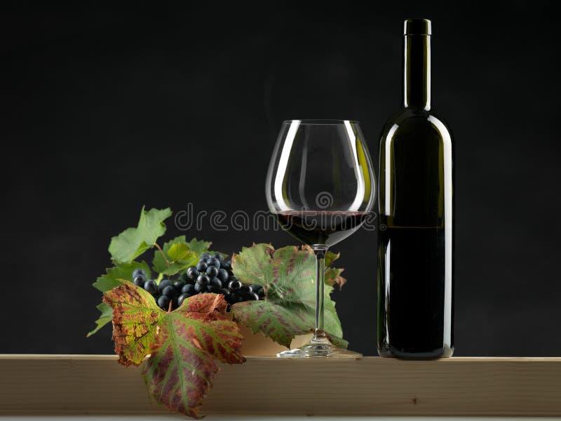 Mettez le vin rouge, glace, fond noir de raisins image stock