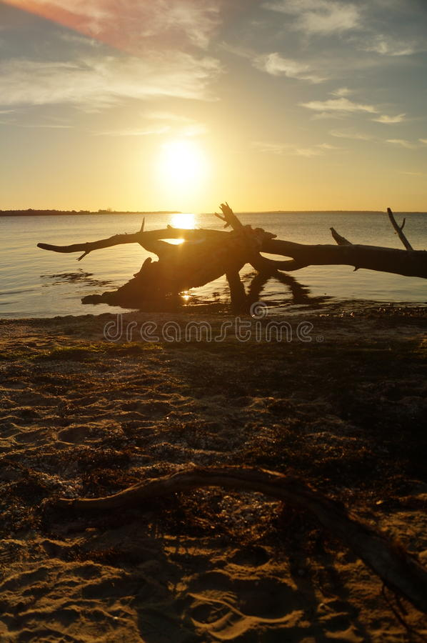 Metungs-Sonnenuntergang stockfotografie