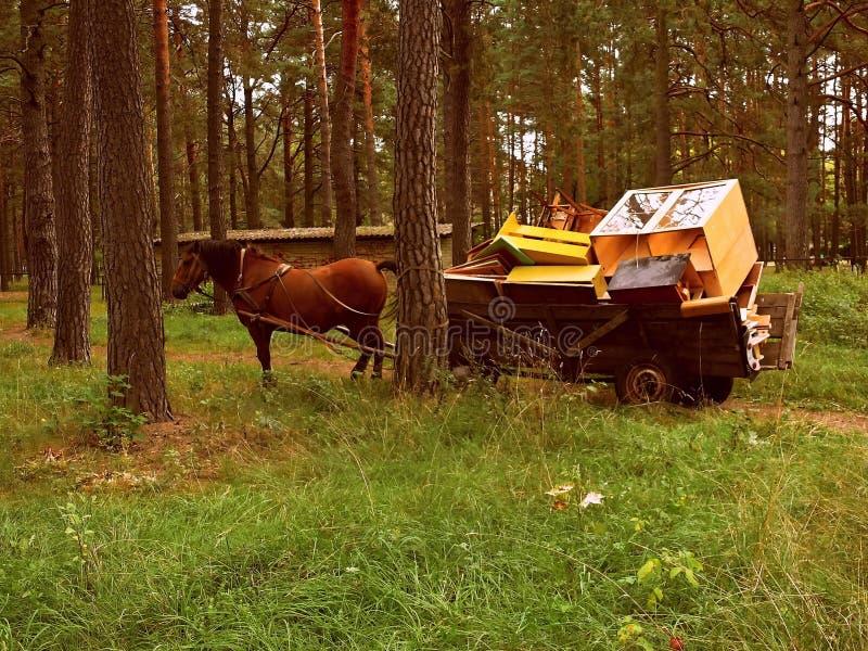 meubles de cheval et de chariot photographie stock