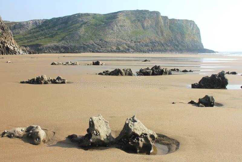 Mewsladebaai, Gower Peninsula, Swansea, Wales royalty-vrije stock foto's