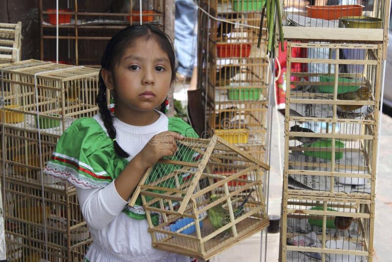 Mexicaans meisje met vogels stock foto