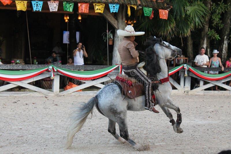Mexicaanse Cowboy die zijn acrobatische vaardigheden tonen stock afbeeldingen