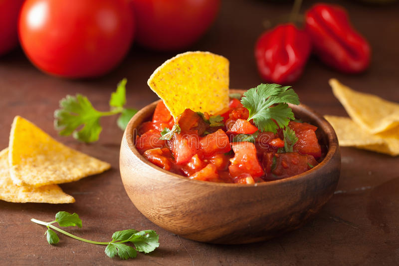 Mexicaanse van salsaonderdompeling en nachos tortillaspaanders royalty-vrije stock foto's