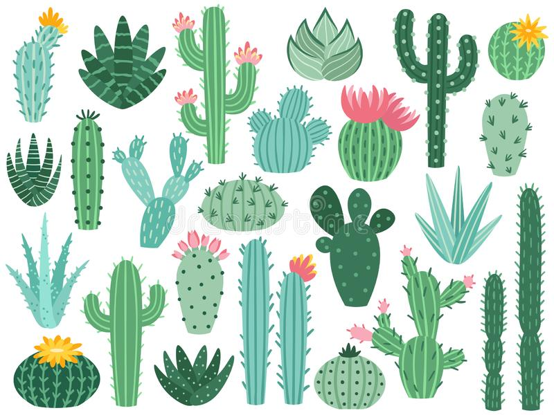 Mexican cactus and aloe. Desert spiny plant, mexico cacti flower and tropical home plants isolated vector collection stock illustration