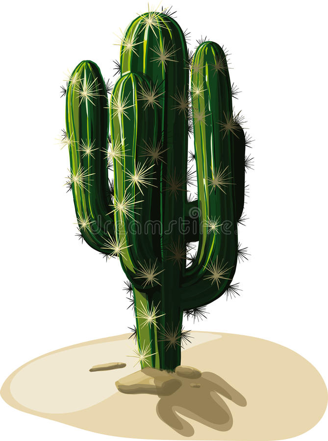 Mexican Cactus in sand royalty free illustration
