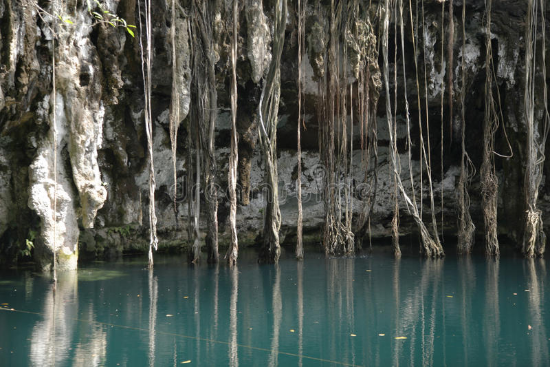 Download Mexican Cenote, Sinkhole Royalty Free Stock Photo - Image: 25253065