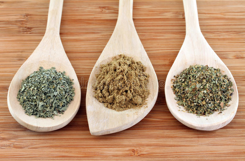 Mexican Cooking Spices. Dried spices of Cilantro, Cumin and Oregano used in Mexican cooking on Wooden Spoons royalty free stock photo