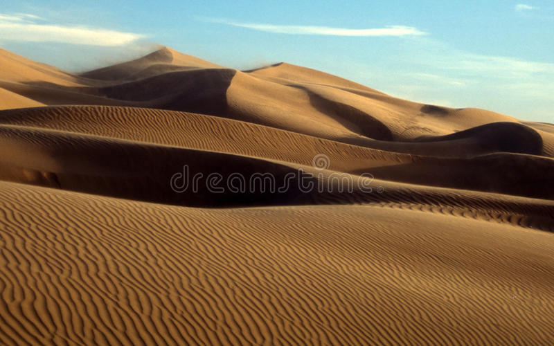 Mexican Desert Sand Dunes royalty free stock photo
