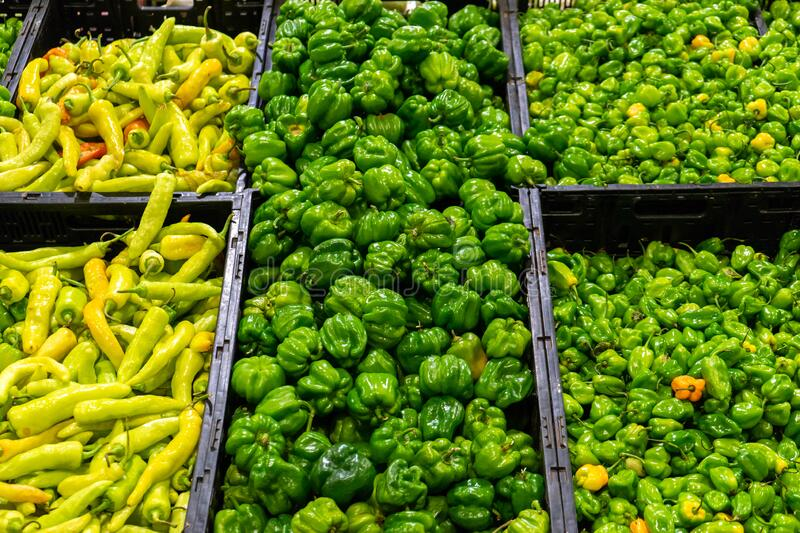 Mexican chili peppers. Mexican green chili peppers at the market royalty free stock photo