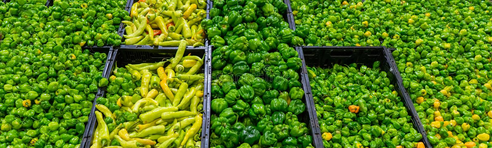 Mexican chili peppers. Mexican green chili peppers in market stock image