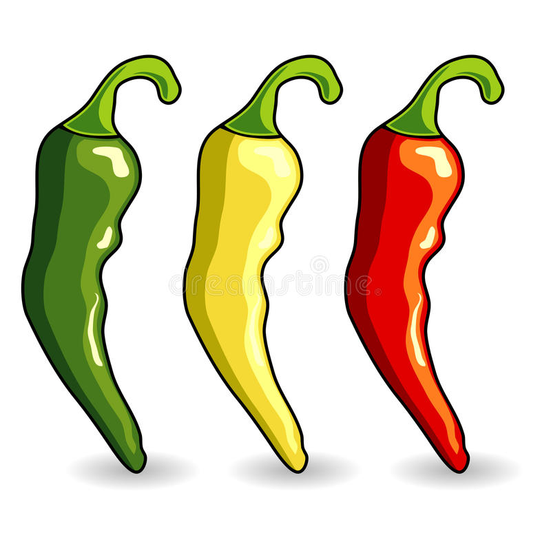 Mexican hot chili peppers royalty free illustration
